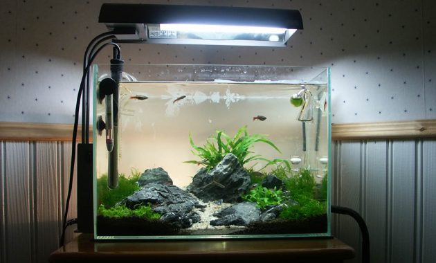 How to Set Up Simple Aquascape with Iwagumi Style - AQUASCAPER