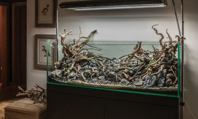 Understanding Hardscape In The Aquascape Aquascaper
